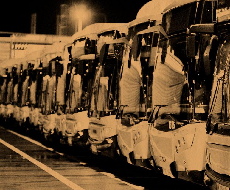Flota buses